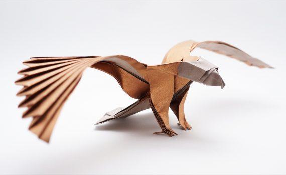 American Eagle v2 by Jo Nakashima